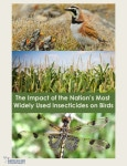 The Impact of the Nation's Most Widely Used Insecticides on Birds