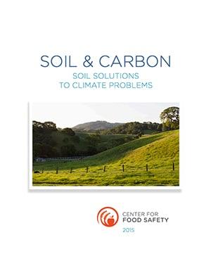 Soils & Carbon